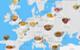 Atlas of Soups.